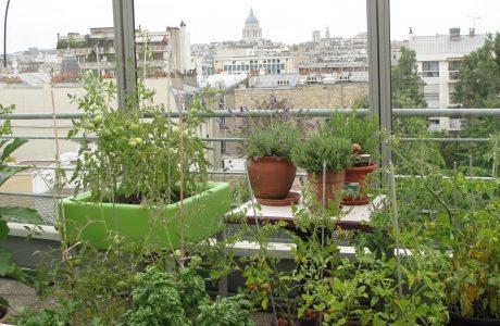 Vue sur Paris de la terrasse au 6e